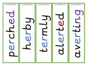er root word cards